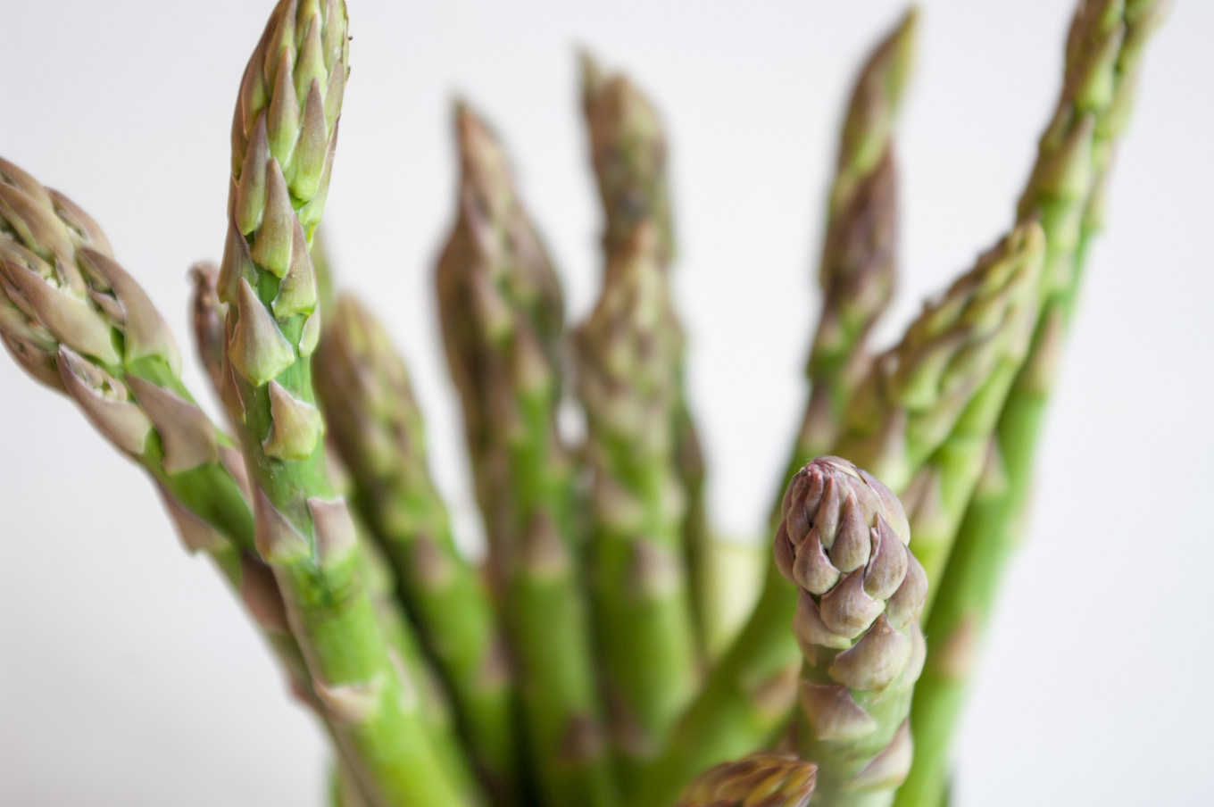 Asparagus Canapés with Parmesan –  Delicate asparagus canapés with sourdough toast, asparagus cream, radish and Parmesan cheese (vegan canapé option available). Great vegetarian party food or spring wedding food. By @deliciouscratch | deliciousfromscratch.com
