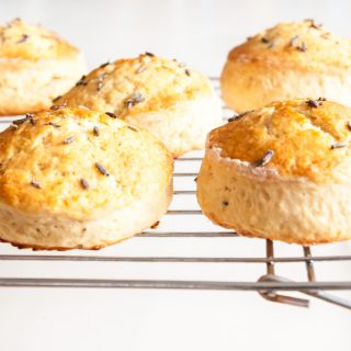 English Scones Recipe – When done right, English scones are light, tender and fluffy inside, best served just out of the oven with dollops of clotted cream and something sweet. Learn how to make this British tea-time treat. By @deliciouscratch | deliciousfromscratch.com